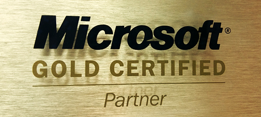 2006 - Netiks becomes a Gold Microsoft Partner on CRM, Software Development and Software Integration