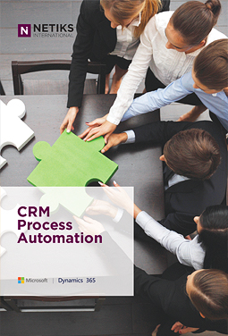 Netiks CRM Process Automation Brochure